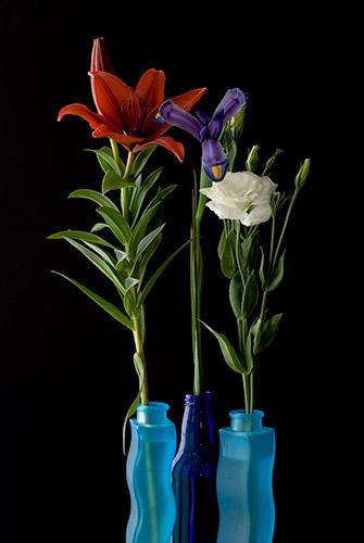 Photo Title:   3 Blue Vases