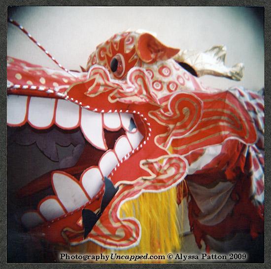 Holga - Dragon