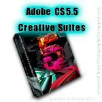 What is in Each Adobe CS5.5 Creative Suite 5.5 ?